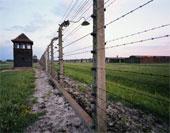 Auschwitzfence