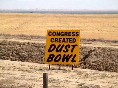 090728_food_dust_bowl
